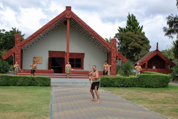 Marae ceremony warrior backs-up