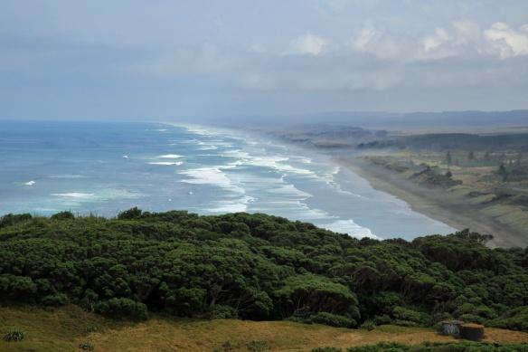 Muriwai Beach 2