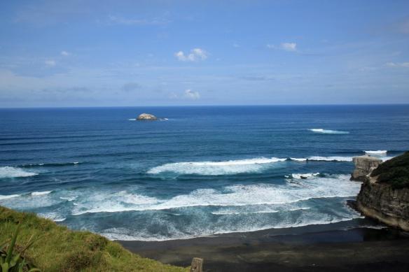 Muriwai Beach & Gannet colony 2