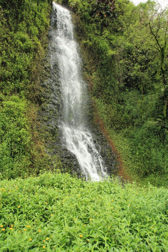 Papano'o waterfall 3