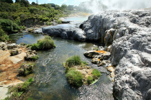 Te Puia cold river at Pohutu Geyser