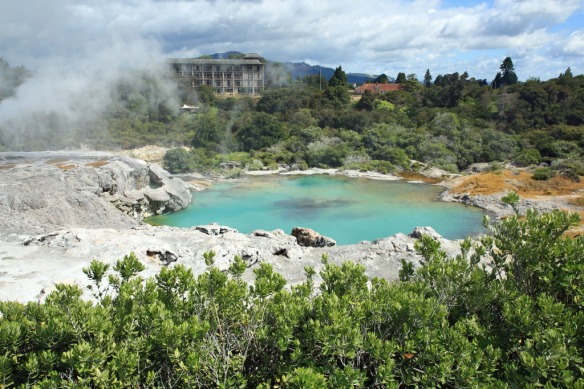 Te Puia pool below Pohutu Geyser