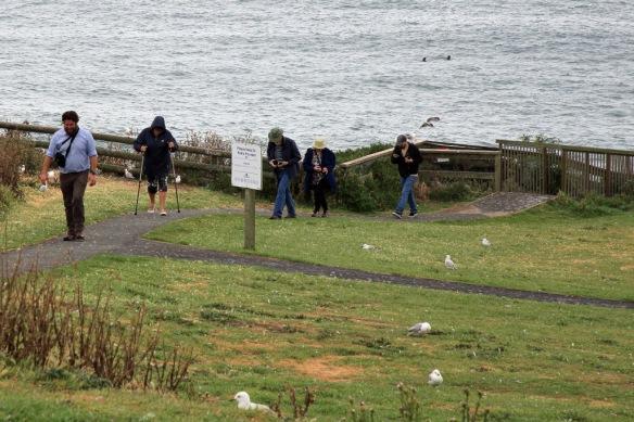 Albatross centre Judi and guide Ben returning