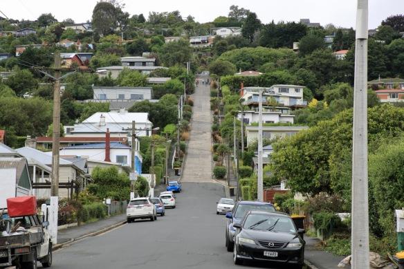 Baldwin Street world's steepest street