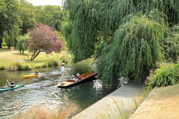 Botanical gardens punt on Avon 2
