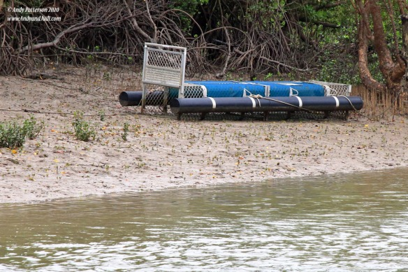 Crocodile trap