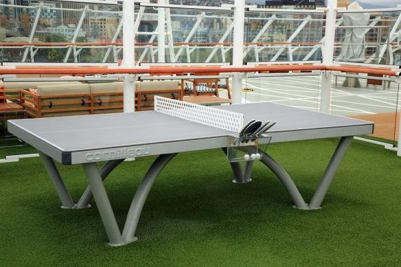 Dk 9 table tennis