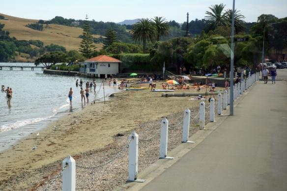 Included Akaroa beach