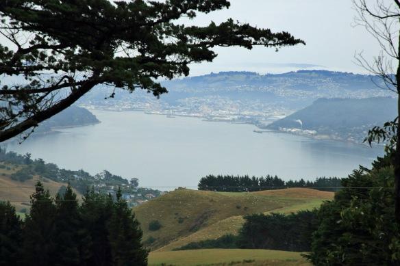 Larnach Castle looking down Otago Inlet to Dunedin