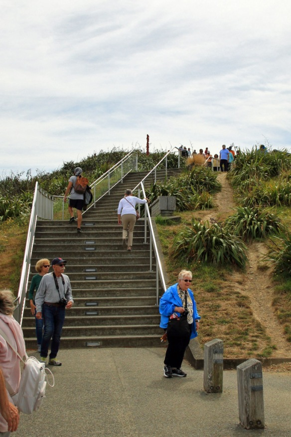 Stairs up to Mt Victoria lookout