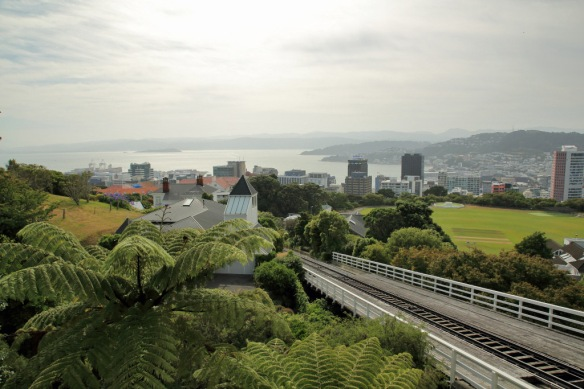 Top of cable car looking down on Wellington