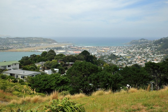 Wellington airport from atop Mt Victoria