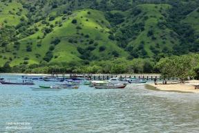 Komodo Is boats moored