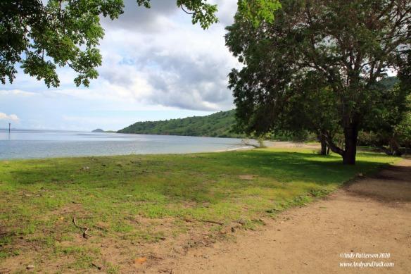 Komodo Is shore