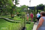 Orchid garden lawn 2