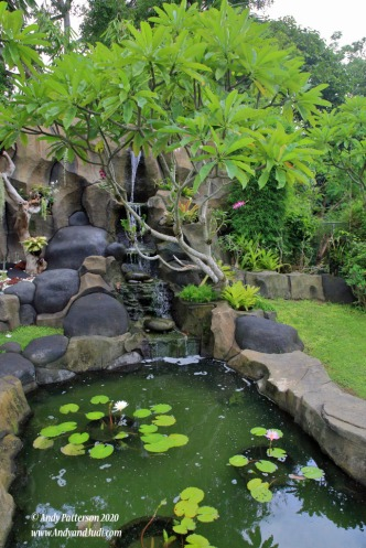 Orchid garden waterfall and pond