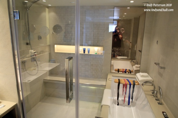 Suite shower and bath tub
